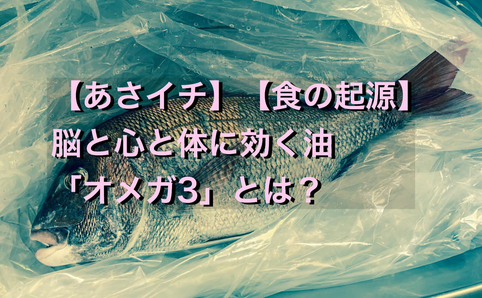 【あさイチ】【食の起源】オメガ3の油の効果は?